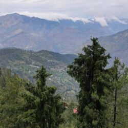 Look-These-Places-Before-Planning-Trip-Shimla